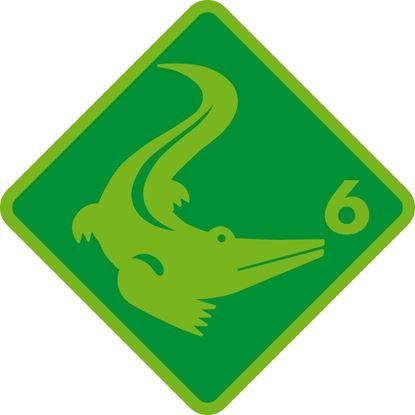 Bild von Schwimmkurs Krokodil