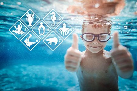 Bild für Kategorie Basic Schwimmkurse