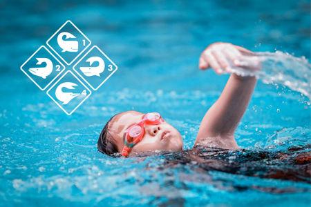 Bild für Kategorie Aufbau Schwimmen